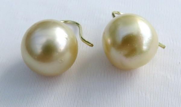Südseeperlen Unikat Ohrringe 14 mm AA naturgold GG 585 Atelierarbeit 3632