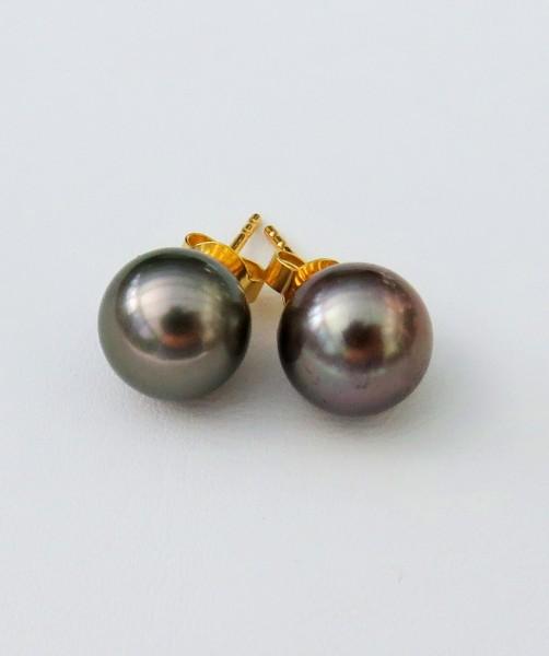 Tahiti Perlen Ohrringe Tahiti Tropfen Perlen Goldhaken Ohrringe 14 ct GG 4663